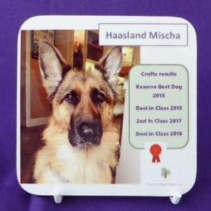 Dog Pedigree Coaster